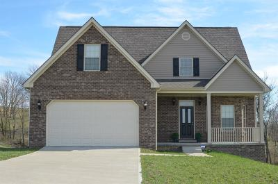 Lancaster Single Family Home For Sale: 660 Cleo Drive