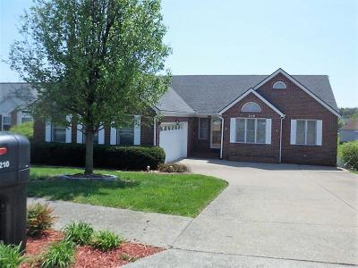 Frankfort Single Family Home For Sale: 210 Mallard Drive