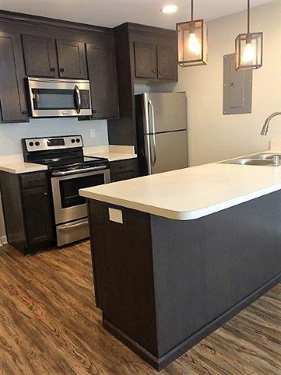 Frankfort Condo/Townhouse For Sale: 333 East 4th Street #B-12