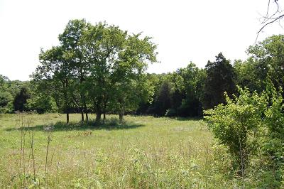 Anderson County, Fayette County, Franklin County, Henry County, Scott County, Shelby County, Woodford County Farm For Sale: 7040 Troy Pike