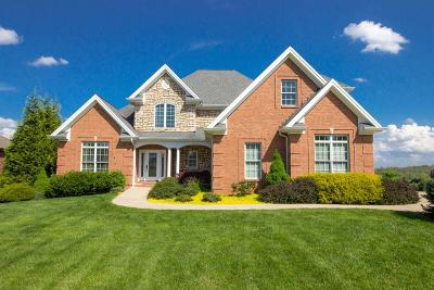 Danville Single Family Home For Sale: 240 Bluffwood