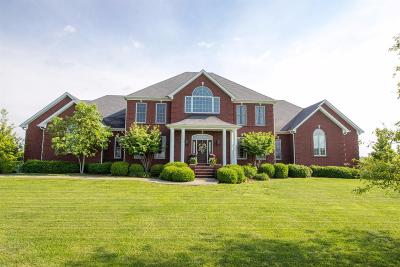 Danville Single Family Home For Sale: 4071 Perryville Rd