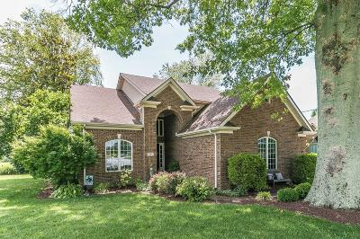 Berea Single Family Home For Sale: 911 Cabernet Drive