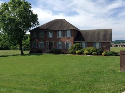 Berea Single Family Home For Sale: 164 Angel Spur Road