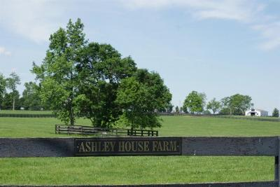 Anderson County, Fayette County, Franklin County, Henry County, Scott County, Shelby County, Woodford County Farm For Sale: 913 Aiken Road