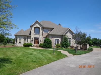 Single Family Home For Sale: 2653 Our Native Lane