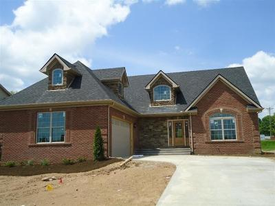 Nicholasville Single Family Home For Sale: 100 Allie Run