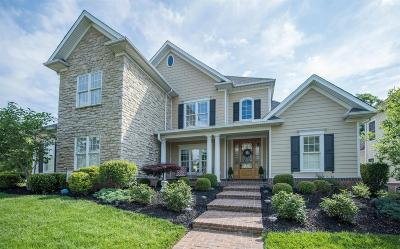 Lexington Single Family Home For Sale: 3664 Horsemint Trail