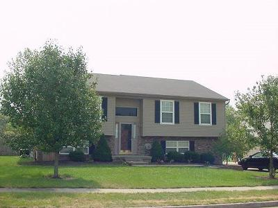 Nicholasville Single Family Home For Sale: 220 S Town Branch Drive