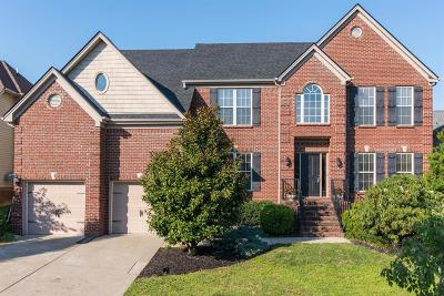 Lexington Single Family Home For Sale: 3785 Ridge View