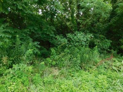 Anderson County Residential Lots & Land For Sale: 1 Carlton Drive