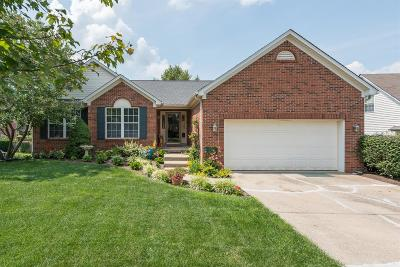 Lexington Single Family Home For Sale: 117 Masterson Station Drive