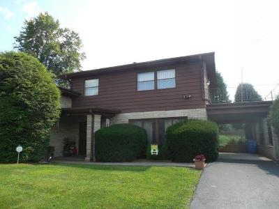 Danville Single Family Home For Sale: 807 Iroquois