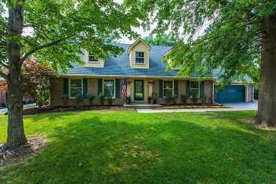 Lexington Single Family Home For Sale: 979 Edgewater Drive