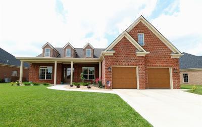 Lexington Single Family Home For Sale: 445 Weston Park