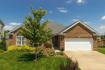 Nicholasville Single Family Home For Sale: 288 Bernie Trail
