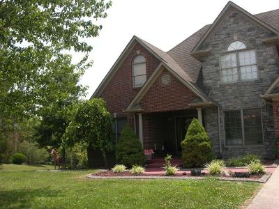 Richmond Single Family Home For Sale: 209 Upper Hines Creek Road