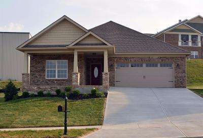Nicholasville Single Family Home For Sale: 305 Patmore Ln