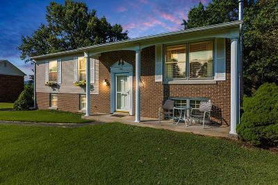 Berea Single Family Home For Sale: 160 Redbud Drive