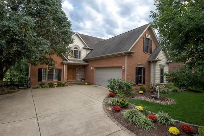 Lexington Single Family Home For Sale: 528 Sundrop Path