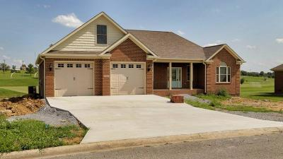 Harrodsburg Single Family Home For Sale: 137 Ash Brook Lane