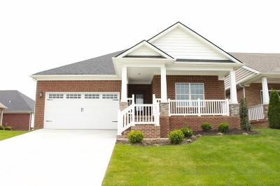 Nicholasville Single Family Home For Sale: 141 Patmore Lane