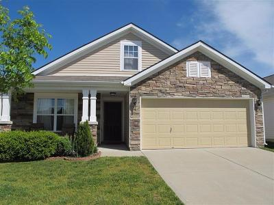 Single Family Home For Sale: 622 Lucille Drive