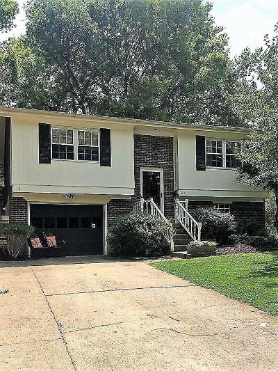 Franklin County Single Family Home For Sale: 141 Valley Brook Drive
