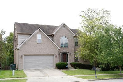 Single Family Home For Sale: 2116 Twain Ridge Drive