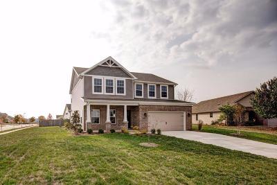 Lexington Single Family Home For Sale: 167 Ash Rapids Court
