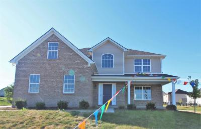 Nicholasville Single Family Home For Sale: 888 Union Mill Road