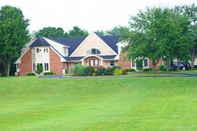 Nicholasville Single Family Home For Sale: 331 Almahurst Lane