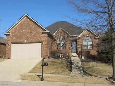 Lexington Single Family Home For Sale: 2464 Astarita Way