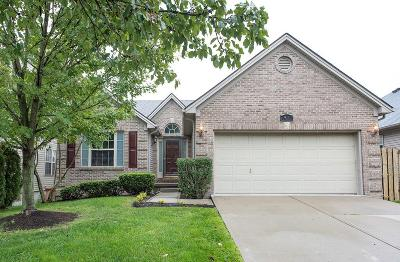Lexington Single Family Home For Sale: 921 Winding Oak Trail