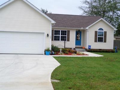 London Single Family Home For Sale: 3367 Barbourville Road