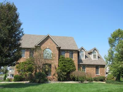 Nicholasville Single Family Home For Sale: 139 Arbee Drive