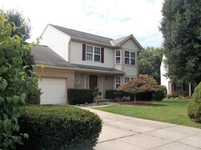 Burlington Single Family Home For Sale: 7432 Indian Ridge Way