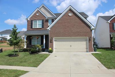 Lexington Single Family Home For Sale: 4005 Mooncoin Way