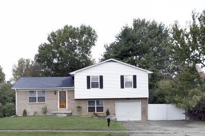 Single Family Home For Sale: 3720 Sundart Drive