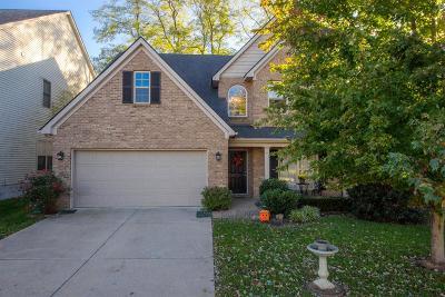Lexington Single Family Home For Sale: 972 Jouett Creek Drive