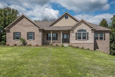 Georgetown Single Family Home For Sale: 124 Blackberry Ridge Court