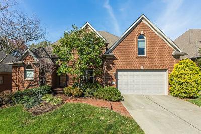 Lexington Single Family Home For Sale: 5045 Ivybridge Drive