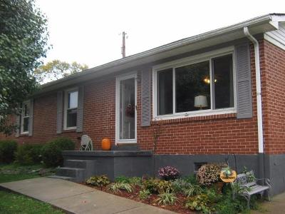 Single Family Home For Sale: 127 Lynne Drive