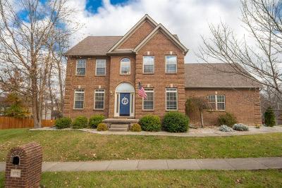 Lexington Single Family Home For Sale: 677 Poplar Springs Lane
