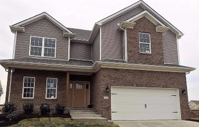 Lexington Single Family Home For Sale: 2573 Polo Club Boulevard