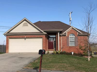 Lawrenceburg Single Family Home For Sale: 580 Copperfield Drive