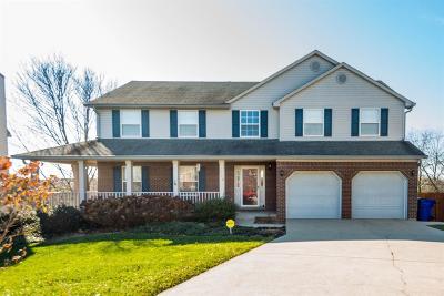 Lexington Single Family Home For Sale: 704 Pinnacle Court