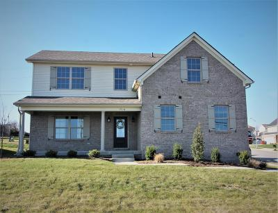 Nicholasville Single Family Home For Sale: 1516 Orchard Drive
