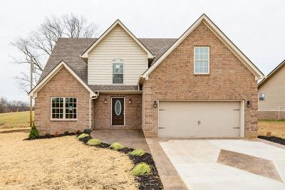Nicholasville Single Family Home For Sale: 104 Ware Boulevard