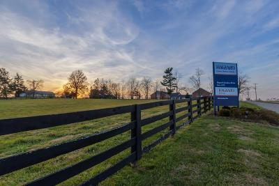 Lexington Single Family Home For Sale: 4318 Iron Works